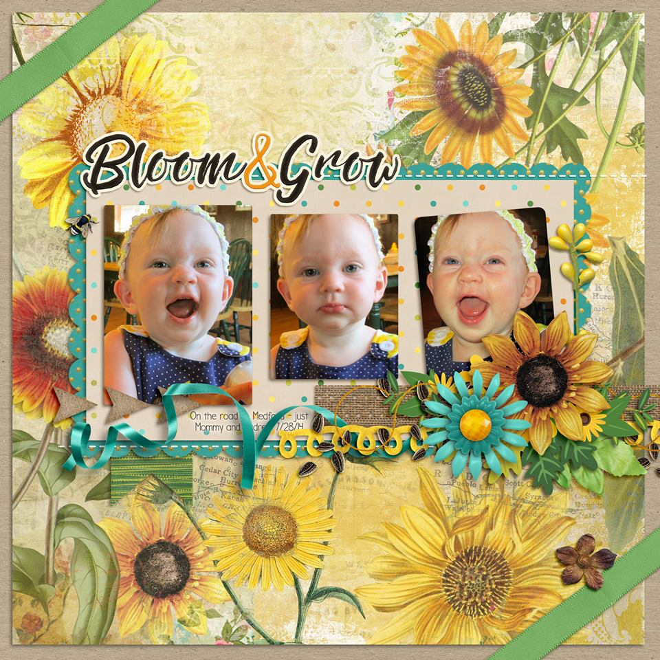 Gingerscraps Kits Sunflower Sayings By Clever Monkey