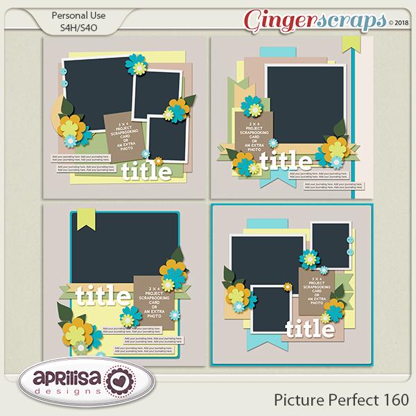 Picture Perfect 160 by Aprilisa Designs