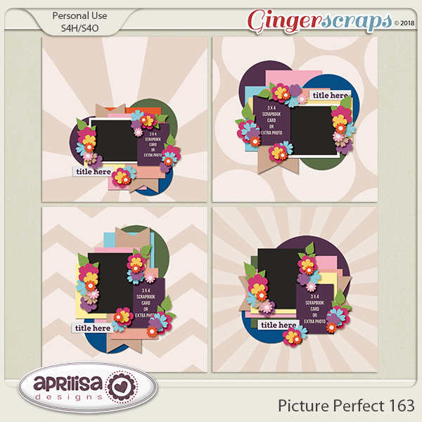 Picture Perfect 163 by Aprilisa Designs