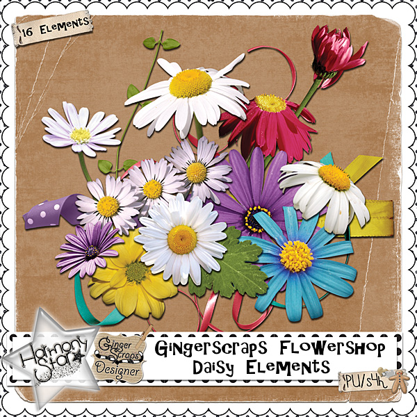 GingerScraps Flowershop - Daisy Elements