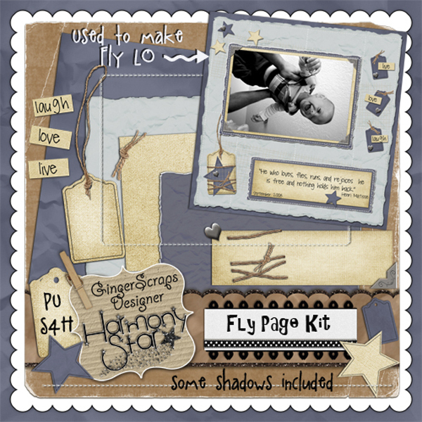 Fly Page Kit