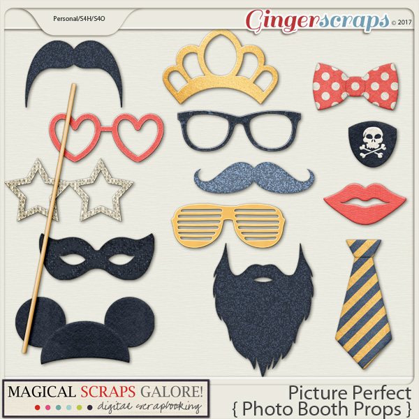 Picture Perfect (photo booth props)