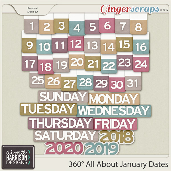360° All About January Date Tabs by Aimee Harrison