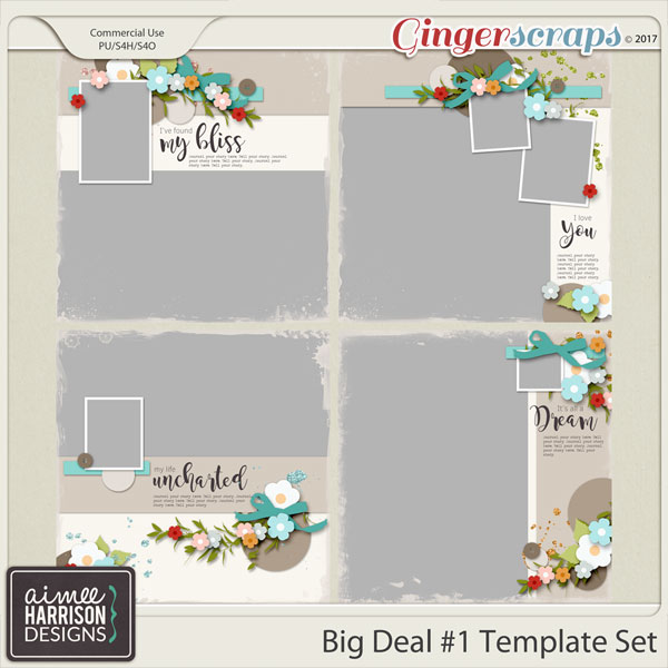 Big Deal #1 Templates by Aimee Harrison