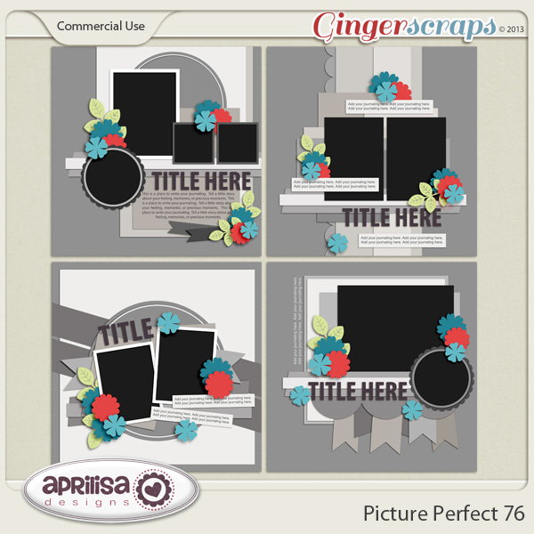 Picture Perfect 76