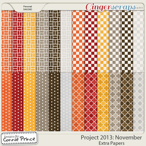 Project 2013:  November - Extra Papers