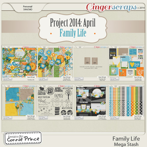 Project 2014 April:  Family Life - Mega Stash