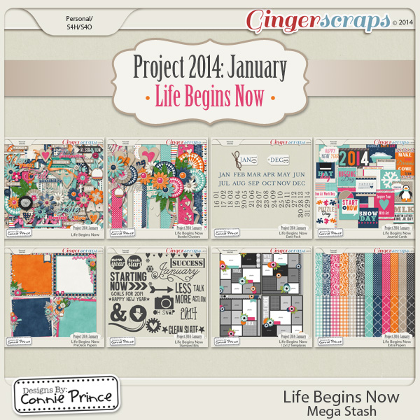 Project 2014 January:  Life Begins Now - Mega Stash