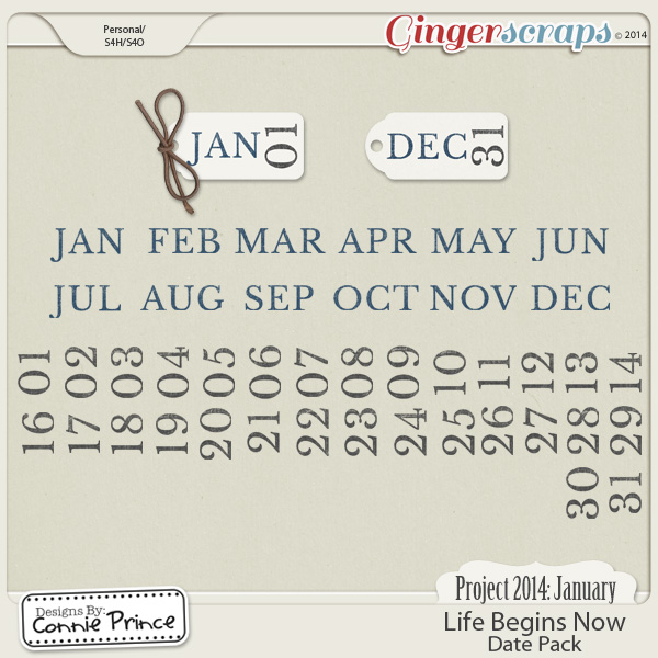 Project 2014 January:  Life Begins Now - Dates