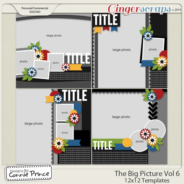 The Big Picture Volume 6 - 12x12 Temps (CU Ok)