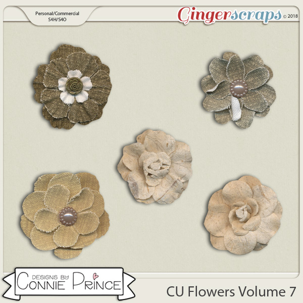 Commercial Use Flowers Volume 7 by Connie Prince.