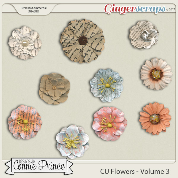 Commercial Use Flowers Volume 3
