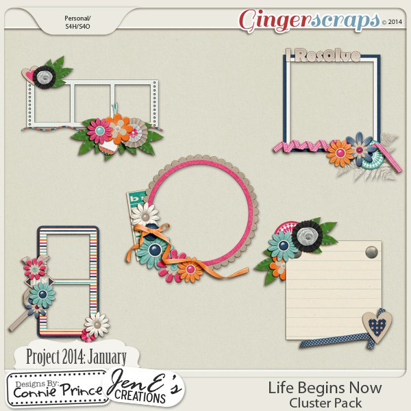 Project 2014 January:  Life Begins Now - Cluster Pack