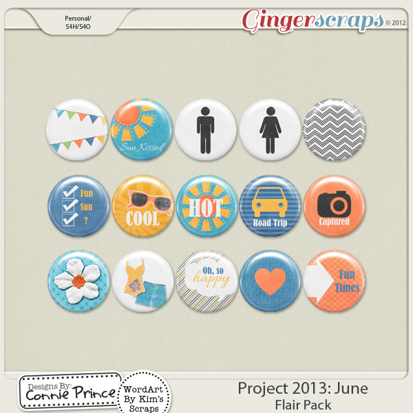 Project 2013:  June- Flair Pack