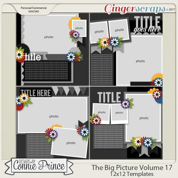 The Big Picture Volume 17 - 12x12 Temps (CU Ok)
