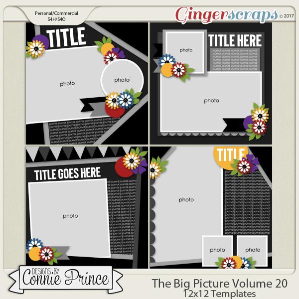The Big Picture Volume 20 - 12x12 Temps (CU Ok)