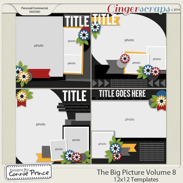 Retiring Soon - The Big Picture Volume 8 - 12x12 Temps (CU Ok)