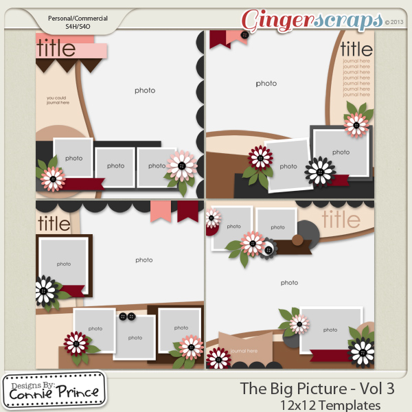 The Big Picture Volume 3 - 12x12 Temps (CU Ok)