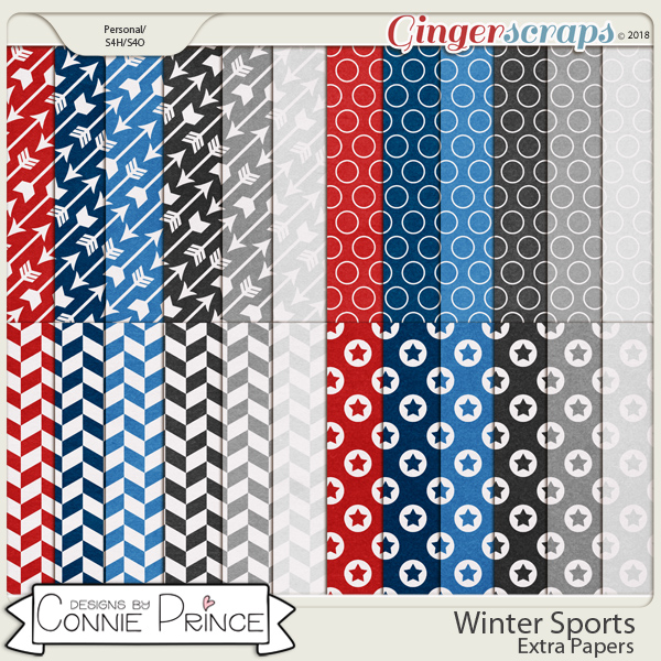 Winter Sports - Extra Papers by Connie Prince