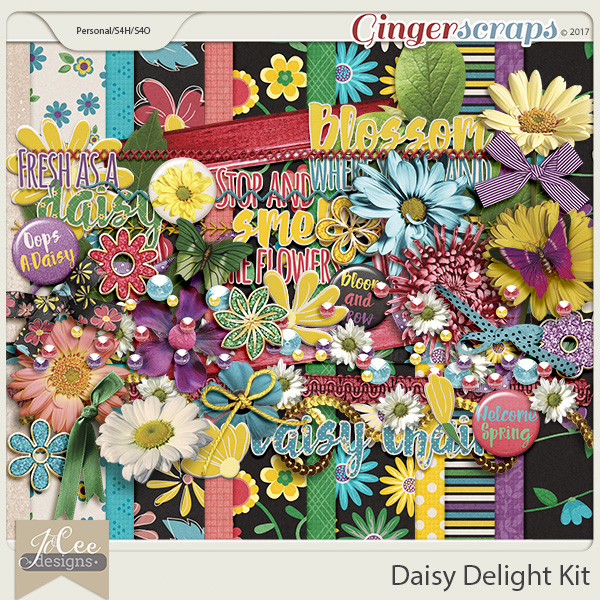 Daisy Delight Kit