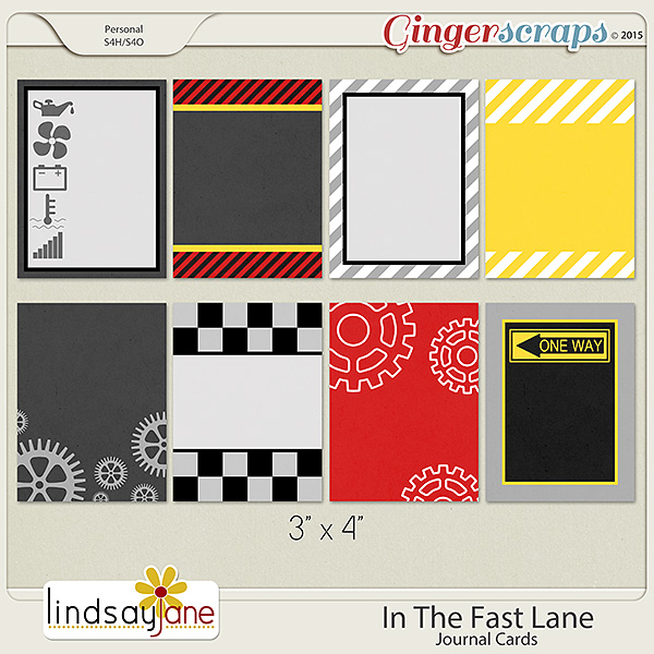 In The Fast Lane Journal Cards by Lindsay Jane