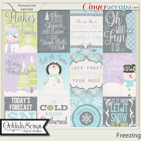 Freezing Journal and Pocket Scrap Cards