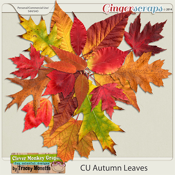 CU Autumn Leaves by Clever Monkey Graphics