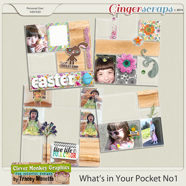 What's in Your Pocket 1 by Clever Monkey Graphics