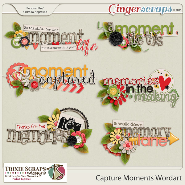 Capture Moments Wordart by Trixie Scraps Designs