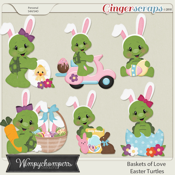 Baskets full of love Easter Turtles