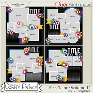 Pics Galore Volume 11 - 12x12 Temps (CU Ok) by Connie Prince