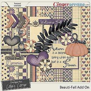 Beauti-Fall Add On