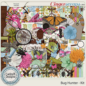 Bug Hunter - Kit