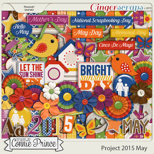 Project 2015 May - Kit