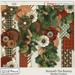 Beneath The Beauty - Border Clusters