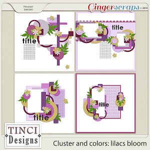 Cluster and colors: lilacs bloom