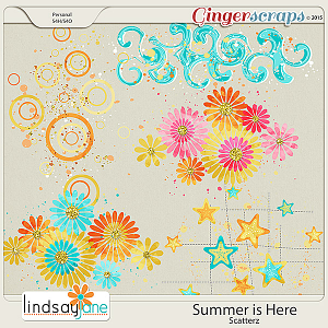 Summer is Here Scatterz by Lindsay Jane