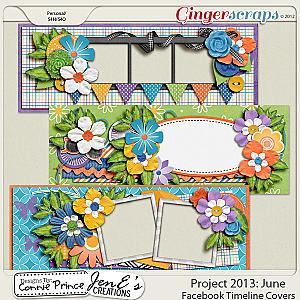 Retiring Soon - Project 2013: June - Facebook Timeline Covers