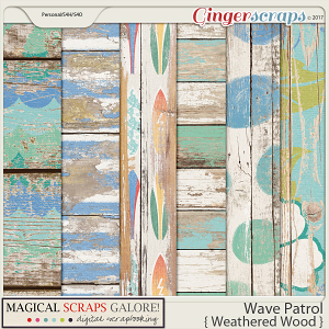 Wave Patrol (shabby woods)