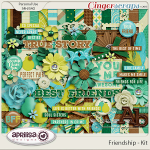 Friendship - Kit