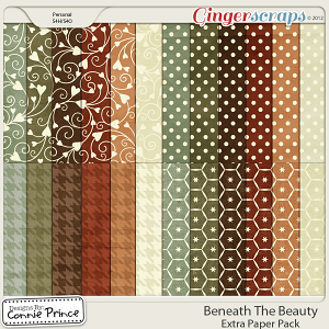 Beneath The Beauty - Extra Papers