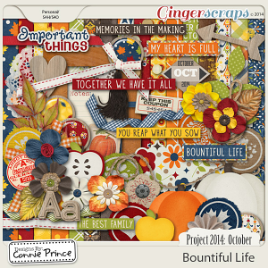 Project 2014 October: Bountiful Life - Kit