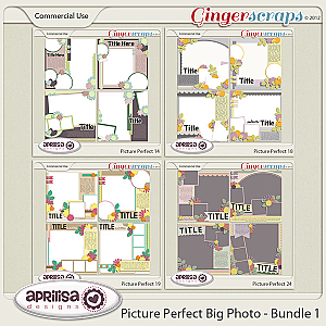 Picture Perfect Big Photos Bundle 1
