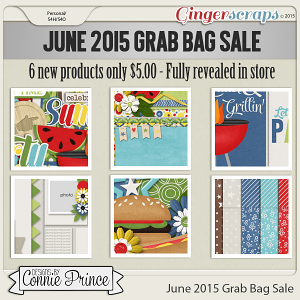 June 2015 Grab Bag Sale - Party Out Back