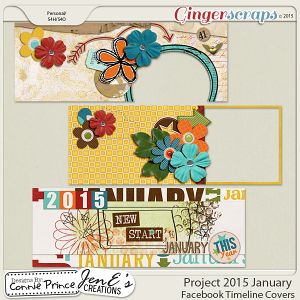Project 2015 January - Facebook Timeline Covers