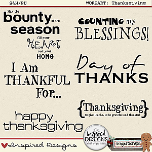 THANKSGIVING: Wordart by Inspired Designs