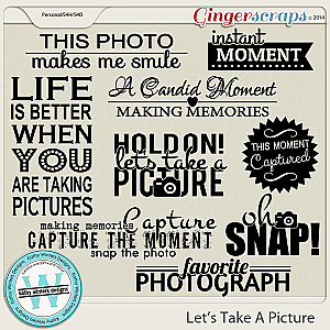 Let's Take A Picture Wordart