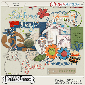 Project 2015 June - Mixed Media Elements