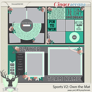Sports: Own the Mat - Wrestling
