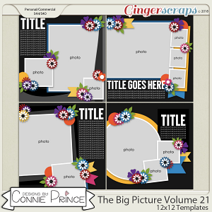 The Big Picture Volume 21 - 12x12 Temps (CU Ok) by Connie Prince